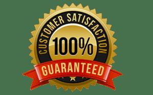 100 Customer Satisfaction